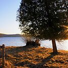 Spring evening on the lake by Megan Noble