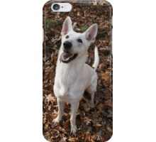 The White Shepherd has a iPhone Case/Skin