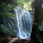 Russell Falls by David  Kembrey