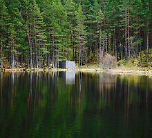 Loch, Aberdeenshire by Mark Mair