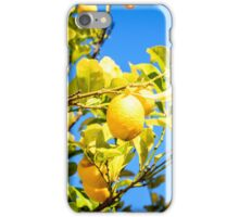 Lemon tree and blue sky iPhone Case/Skin
