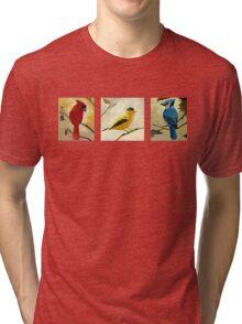 """""""Birds"""" Tri-blend T-Shirt"""