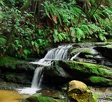 Leura Cascade NSW Australia by Bev Woodman