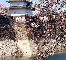Osaka Castle by Paige