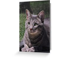 Fuzz Face Greeting Card