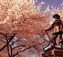 Cherry Blossoms by Jaime Hernandez