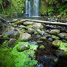 Beauchamp Falls by Neil