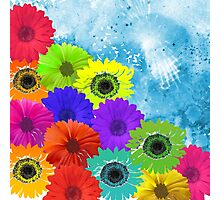 Bright Colorful Flowers on Blue Watercolor Photographic Print