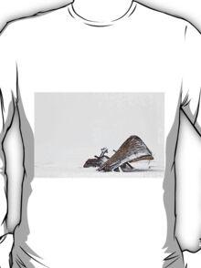 Borgey T-Shirt
