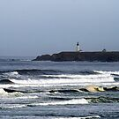 Oceanview of Yaquina Head Lighthouse by Rhonda  Thomassen