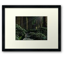 Stroll in Ancient Woods Framed Print