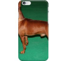 Miniature Pinscher at iPhone Case/Skin