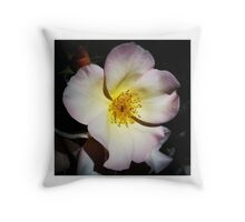 Beautiful Flower Photo - Pink and Yellow Throw Pillow