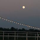 Moon lights by sonjas