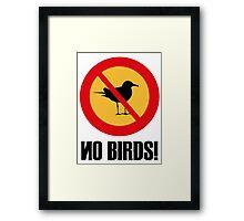 No Birds Framed Print