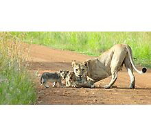 Motherly Love Photographic Print