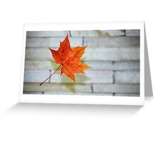The Maple-Leaf Greeting Card