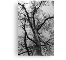 Strong & Tall Canvas Print