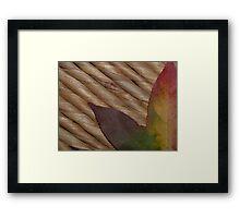 Colour of Autumn Framed Print