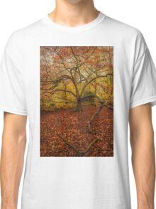 Autumn Colours Classic T-Shirt