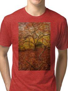 Autumn Colours Tri-blend T-Shirt