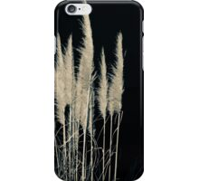 Pampas flowers and leaves isolated on black. iPhone Case/Skin