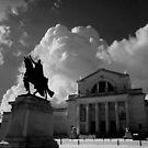 St Louis Art Museum by dstarj