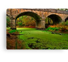 """Green River"" Canvas Print"