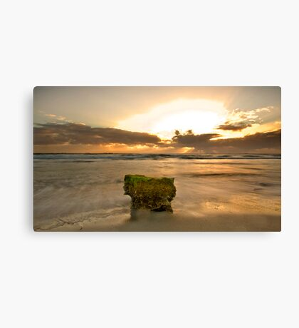 The Sacred Moss Rock Canvas Print