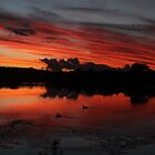 glory in the sky qld australia by Jeannine de Wet