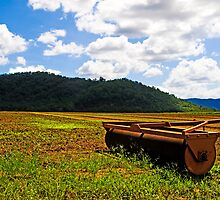 Worked the fields - Sugar Cane Paddocks - Cairns - Queensland - Australia by Paul Davis