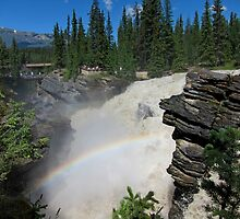 Athabaska Falls in The Rockies by Lena127