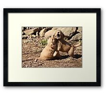 Wrestle Mania Puppy style '09 Framed Print