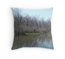 Erie Backwaters Throw Pillow