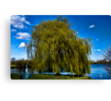 weepy willow daydreamer~ Canvas Print