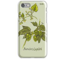 Humulus Lupulus - Hops iPhone Case/Skin