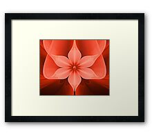 Wild and Delicate Framed Print