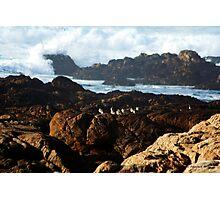 Seagulls and Crashing Waves Photographic Print
