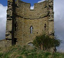 Castle ruin by Julie Short