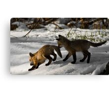For Jay.... Canvas Print