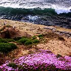 Southern California Beach by rocamiadesign