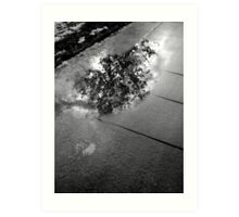 What's in a Puddle Art Print