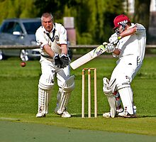 Cricket in Warwickshire by Robert Shaw
