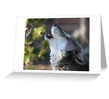Wolf Howling Greeting Card