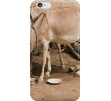 These donkeys have iPhone Case/Skin