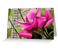 Pink flowers in residential area Greeting Card