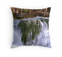 Yorkshire Water Throw Pillow