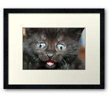 a face only a mummy could love Framed Print