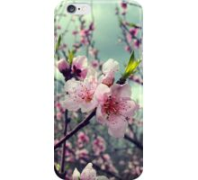 Cherry Blossoms and a Thunder Storm iPhone Case/Skin