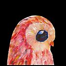 Casarus Owl by rain-dogs